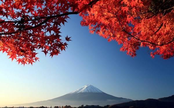 japonyada-sonbahar-rengi