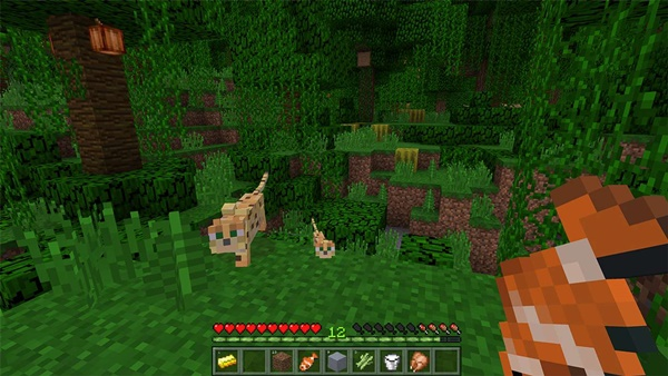 Minecraft Windows 10 Edition 1
