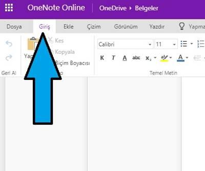 OneNote Online yazım hataları düzenleme dili nasıl ayarlanır