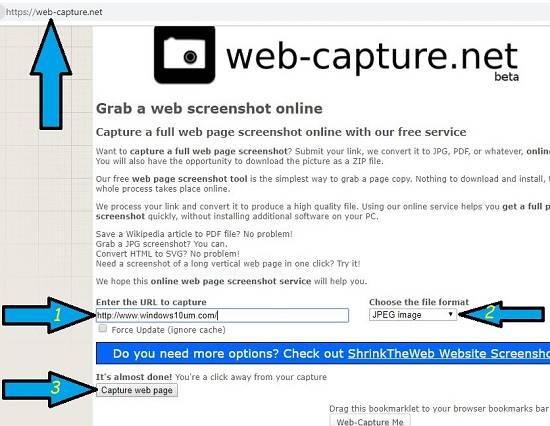 Web sitesi tam ekran görüntüsü alma