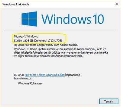 Hangi Windows 10 versiyonunu kullanıyorum